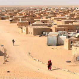"""Ilusiones sobre el Sahara occidental, la RASD y el """"pueblo saharaui"""""""